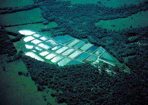 Farlington Hatchery Aerial