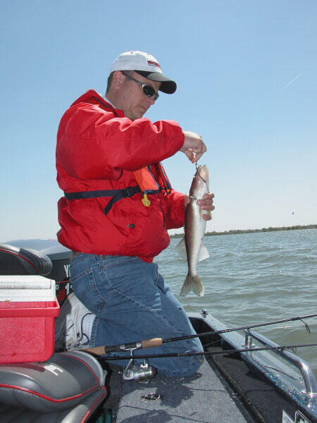 An angler holds a walleye