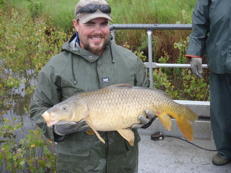 Hocc carp banner creek gallery banner creek jackson for Fishing in kansas