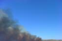 Prescribed Burns - Wilson Wildlife Area
