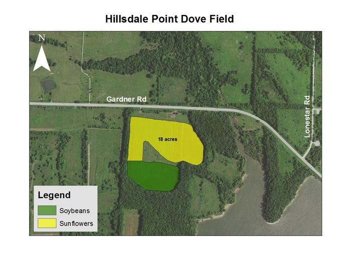 Hillsdale Point Dove Field