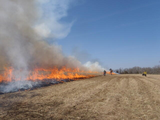 Finishing up the 2011 spring burn