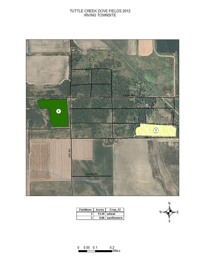 Irving Townsite Dove Fields