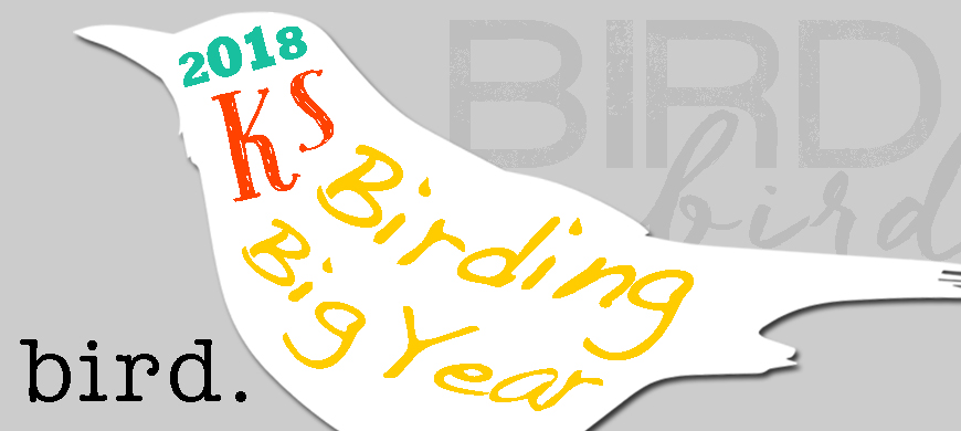 2018 Kansas Birding Big Year Contest