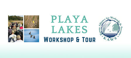 Sign Up For Playa Lakes Tour and Workshop