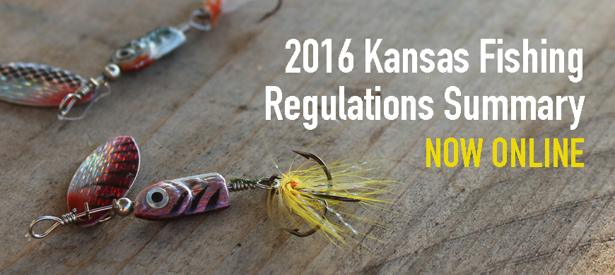 2016 fishing regulations summary available online for Kansas fishing regulations