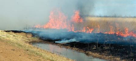 Prescribed Burning Workshop