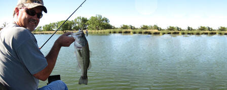 FALL BASS SAMPLING REVEALS FISHING HOTSPOTS