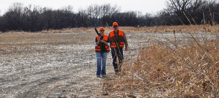 Youth Pheasant and Quail Seasons Perfect For Mentoring