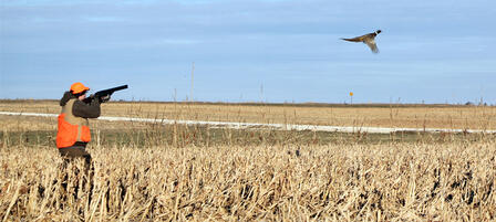 Youth Pheasant Hunt in Baldwin City Oct. 11