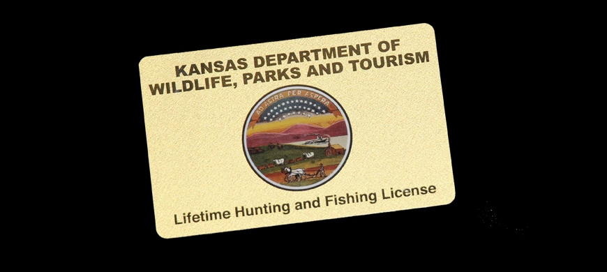 buy a lifetime license now and save / 11-10-15 / 2015 weekly news