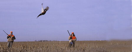 14th ANNUAL WACONDA LAKE YOUTH & WOMEN PHEASANT HUNT  DEC. 10-11