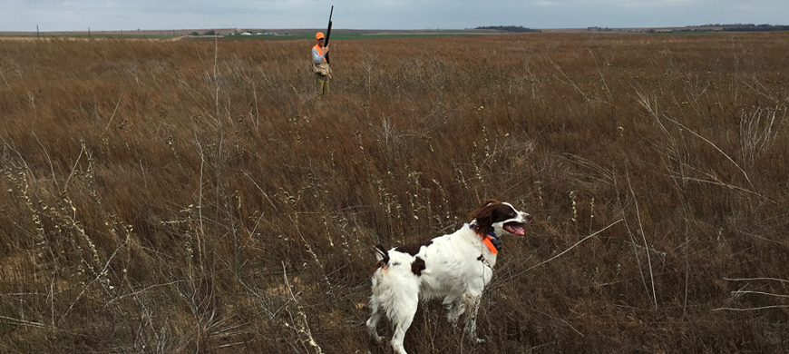 Women and Youth Invited to Celebrity Pheasant Hunt Dec. 12