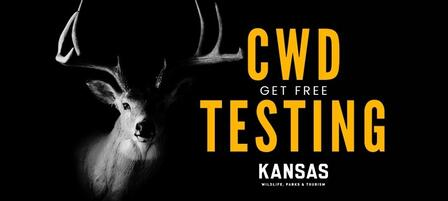 KDWPT To Offer Deer Hunters Free Chronic Wasting Disease Testing