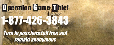 REPORT POACHERS TOLL-FREE AND REMAIN ANONYMOUS