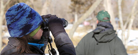 KANSAS BIRDING BIG YEAR IS BIG SUCCESS