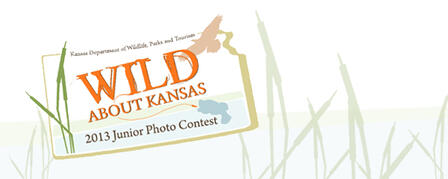NEW CONTEST TO SHOWCASE BUDDING OUTDOOR PHOTOGRAPHERS