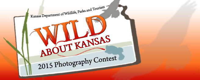 WILD ABOUT KANSAS PHOTO CONTEST NOW OPEN TO ALL AGES