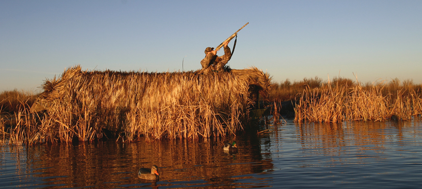 Wildlife, Parks and Tourism Commission Approve Waterfowl Seasons