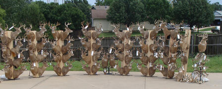 TEXAS MAN SENTENCED TO JAIL IN CONNECTION WITH KANSAS DEER HUNTING AND GUIDING OPERATION