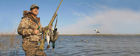 DUCK BREEDING POPULATION ESTIMATES SHOW PROMISING NUMBERS