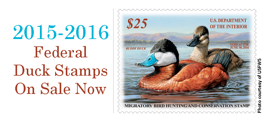 2015-2016 Federal Duck Stamps On Sale Now