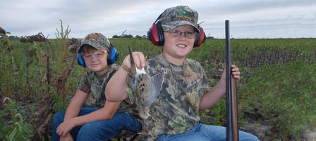 Register for Mentored Dove Hunt On Clinton Wildlife Area