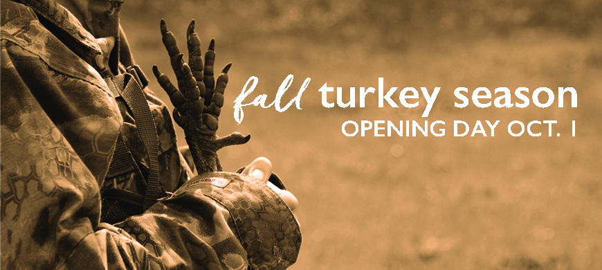 Find Yourself On a Fall Turkey Hunt