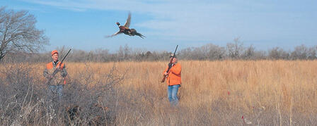 PHEASANT AND QUAIL SEASONS OPEN NOVEMBER 10