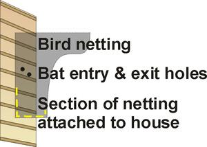 BAT BAFFLE CAPTION ILLUSTRATION