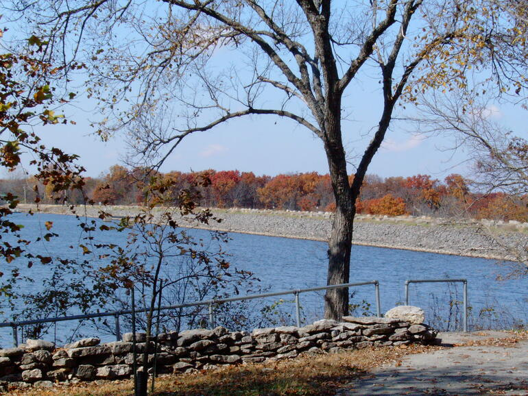 Fall trees behind the dam