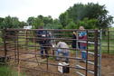 Quality Well Service making horse corrals better