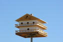 Purple Martin House close-up