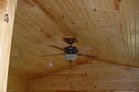 Wilson Lake Elm Ceiling Fan