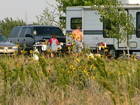 Sunflower Campers