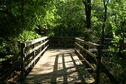 Buck Brush Trail Bridge